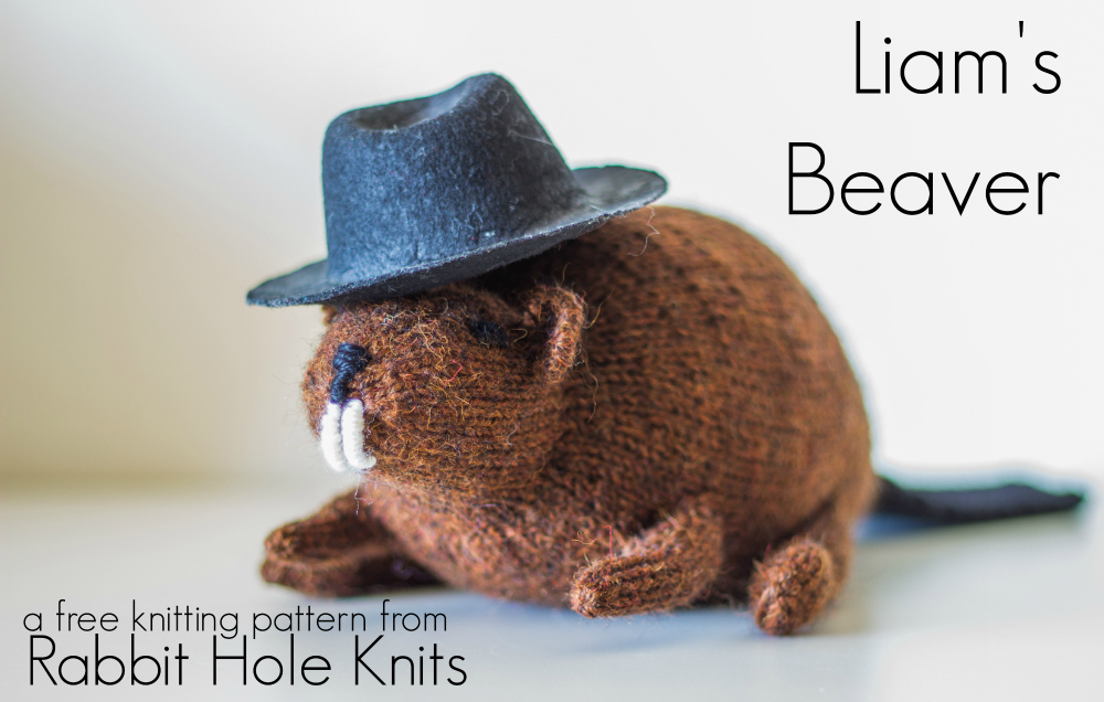 Knit Beaver Pattern title
