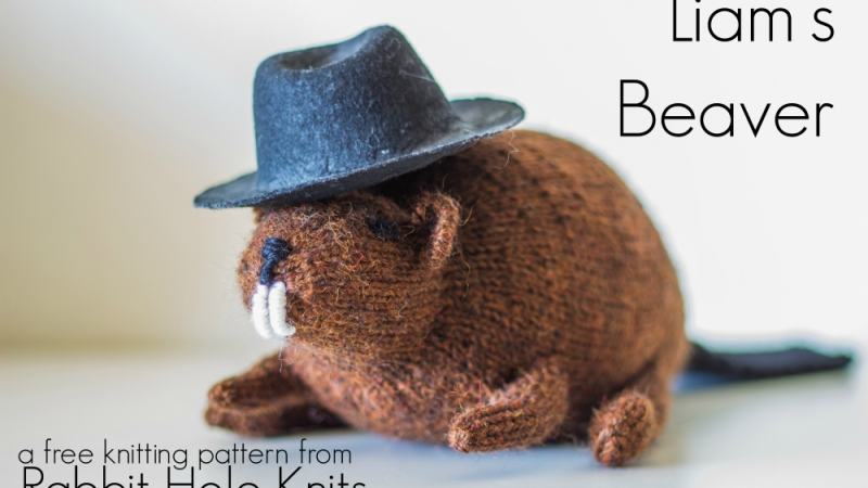 Meet the Pattern: Knit Beaver Plushie