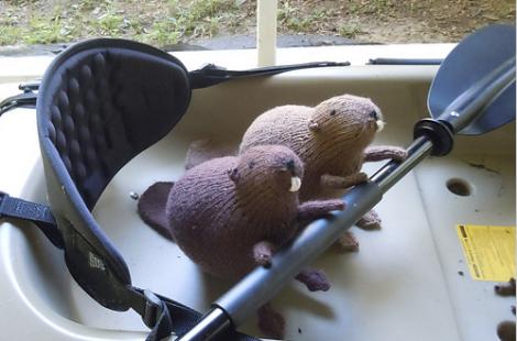 Meet the Pattern: Knit Beaver Plushie