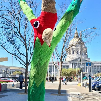 Knitting the Commons:Parrots