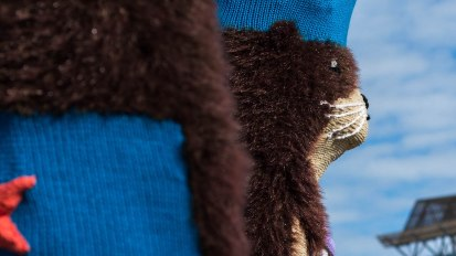 Knitting the Commons: Sea Otters